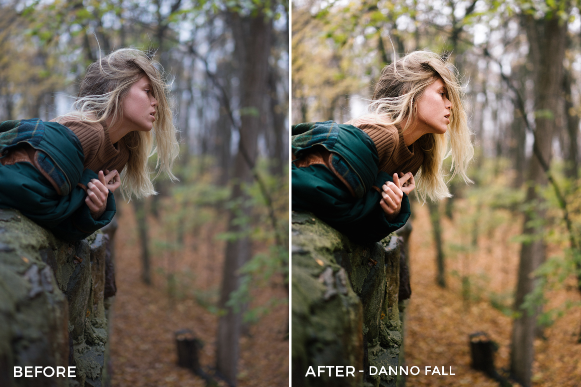 Danno-Fall-Noah-Wolfe-Lightroom-Presets-FilterGrade